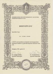 certificate drczineristvanzahnarzt2