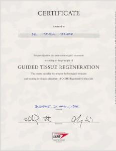 certificate drczineristvanzahnarzt6